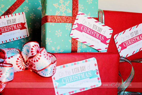 12 days of christmas for your sweetheart - 12 Days Of Christmas Gift Ideas For Him