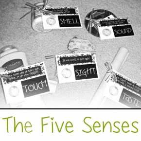 The Five Senses gift idea.