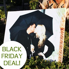 Don't Miss this Black Friday deal!