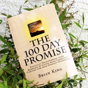 The 100 Day Promise book review.