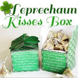Leprechaun Kisses St. Patrick's Day romance idea.