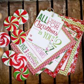 12 Daytz of Christmas