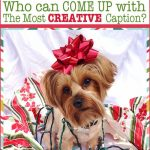 Christmas Caption Contest {Win $25 Gift Card!}