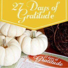27 Days of Gratitude