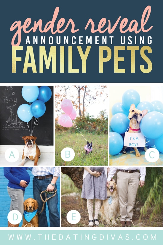 Unique Gender Reveal Announcement Using Family Pets