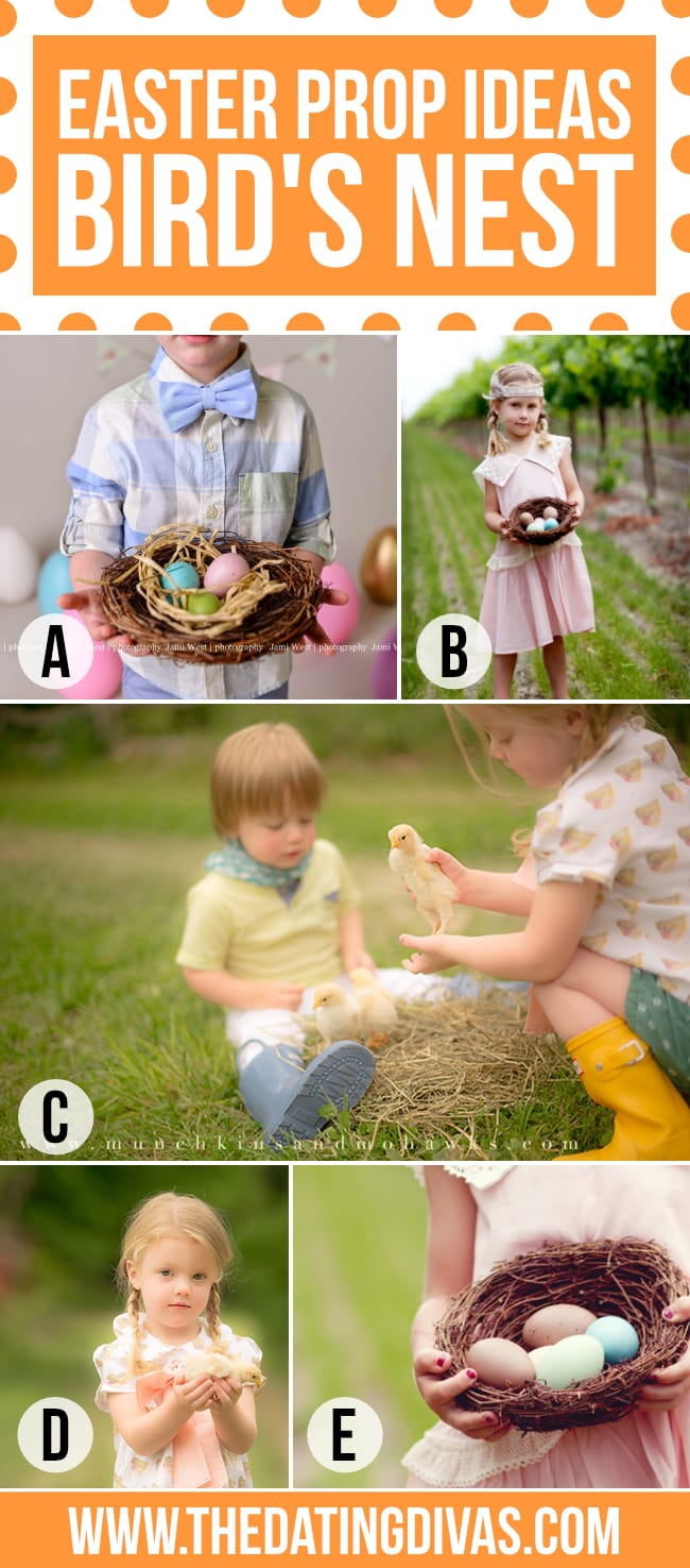 Spring Photography nest as a photo prop