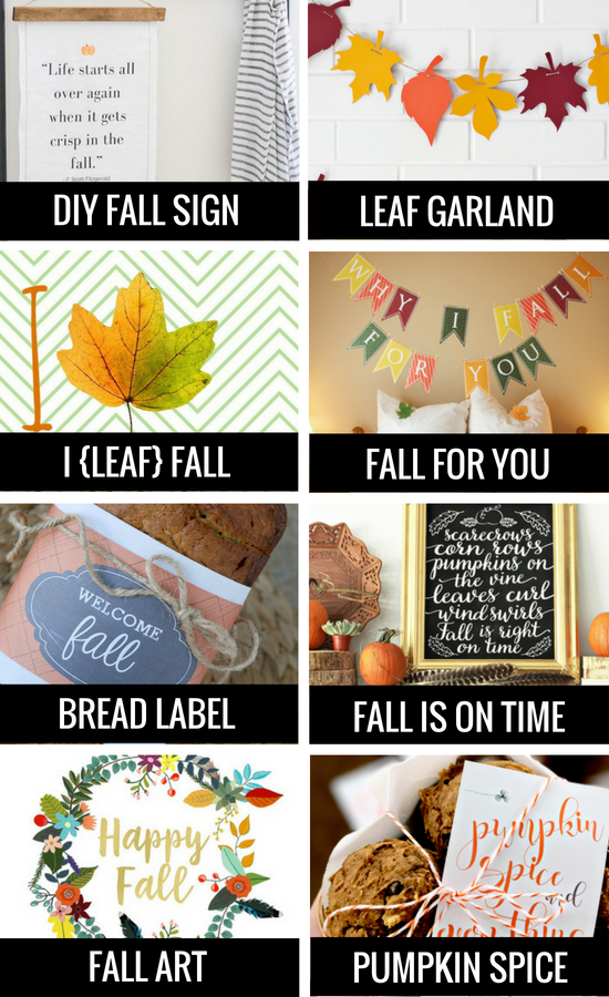 DIY Fall Banner and Fall Signs