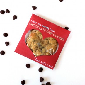 Chocolate-Chip-Cookie-Day-ideas