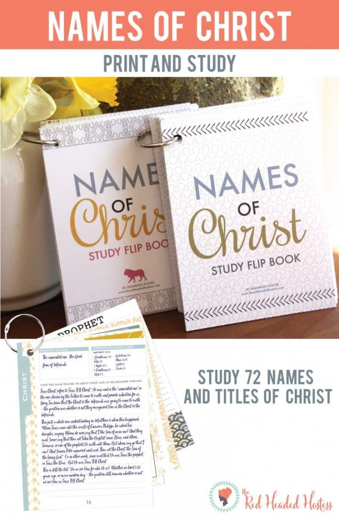 Names of Christ Study Flip Book