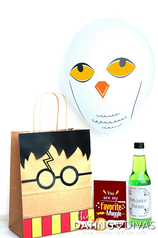 Harry Potter Bag and Gift with owl printables!