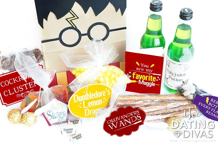 Harry Potter gift idea!
