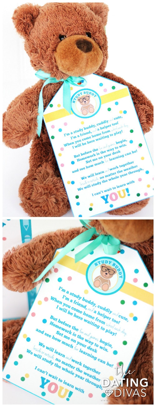Back to School Gift Teddy Bear