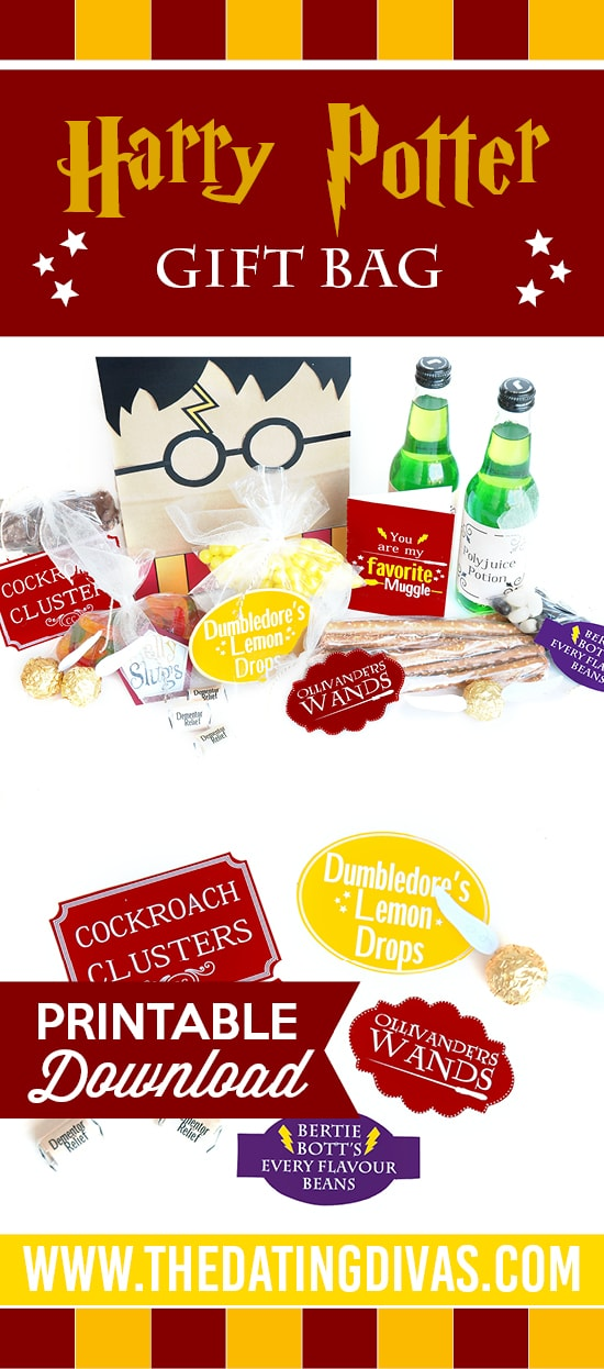 Fun Harry Potter Bag gift idea for your sweetie!