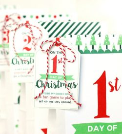 Blogmas Series The 12 Dates of Christmas Doctor Weight Loss Program