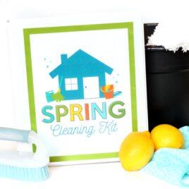 Spring Cleaning Binder