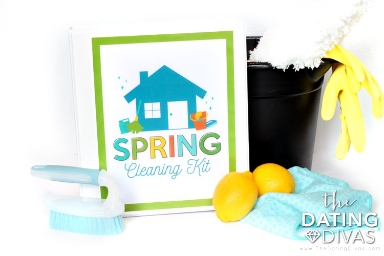 Spring Cleaning Organization