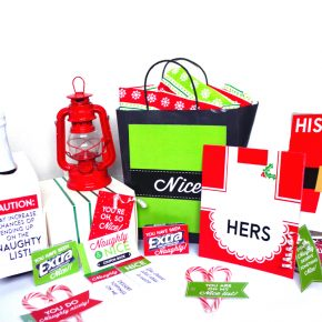 Naughty Or Nice Christmas Husband and Wife Gift Kit