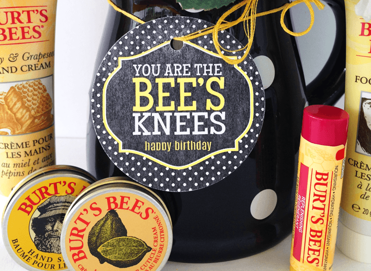 You Are The Bee's Knees Birthday Gift