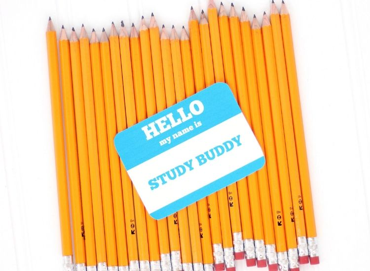 Gift your kid a study buddy for back to school