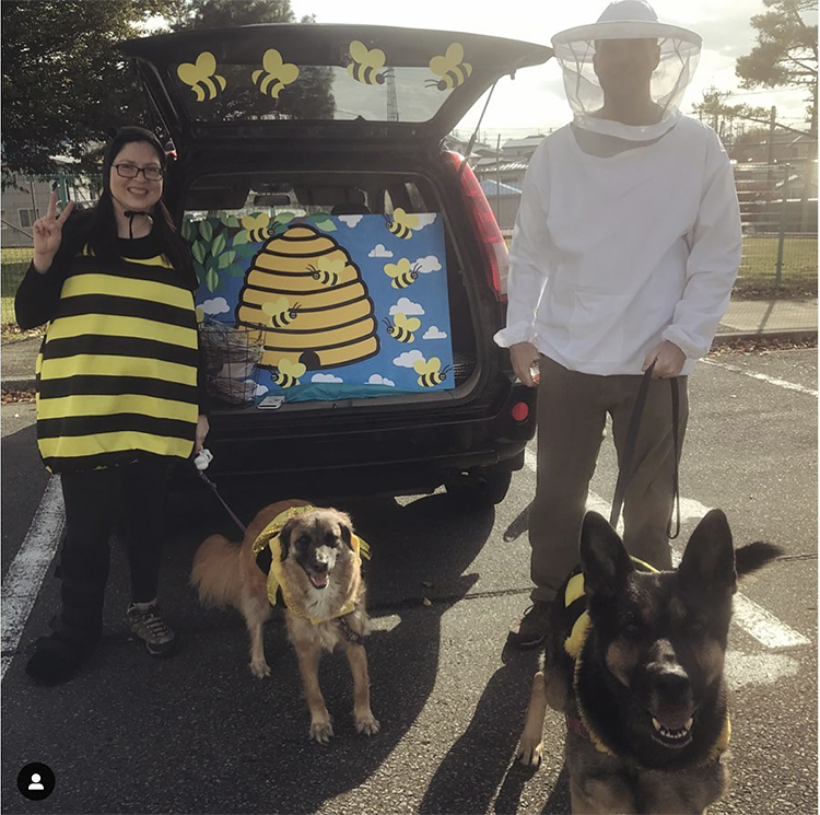 Trunk decorated as a beehive - a great trunk or treat idea for Halloween | The Dating Divas