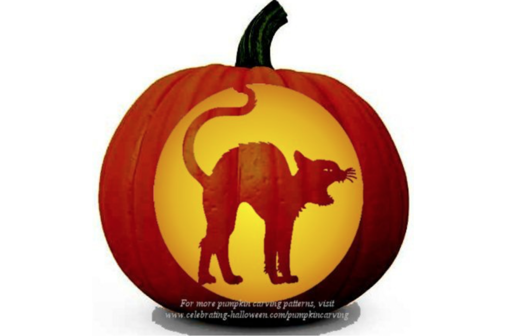 Black cat classic Halloween pumpkin patterns. | The Dating Divas