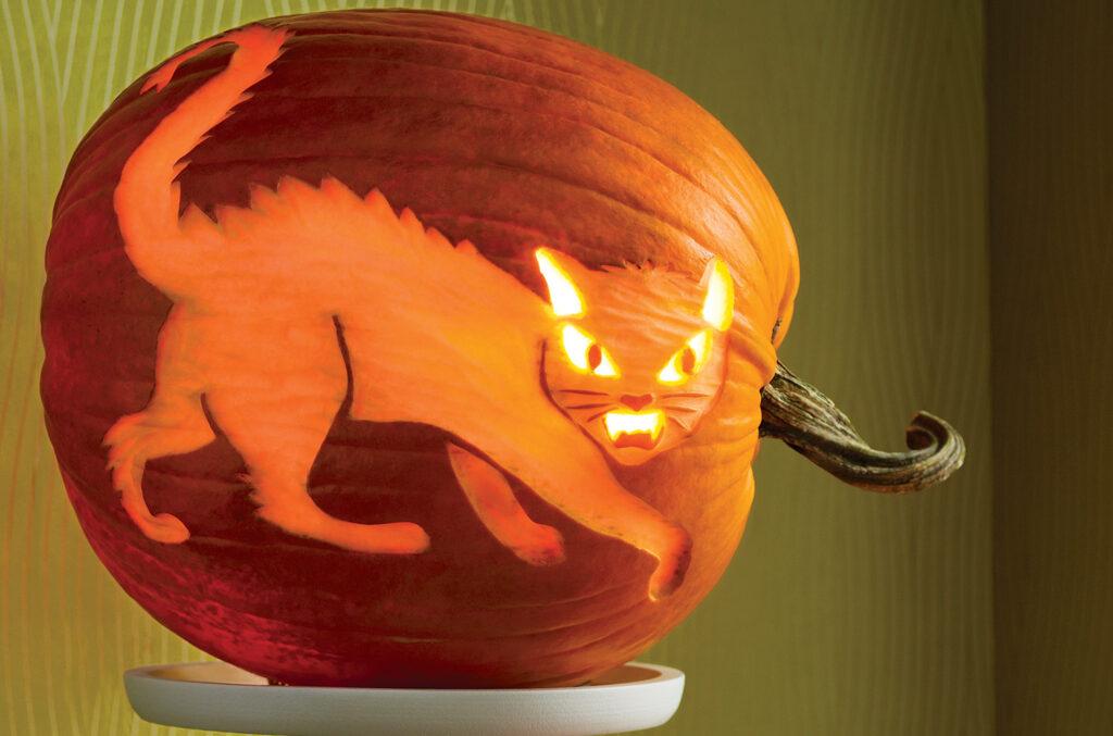 Spooky cat free pumpkin stencils. | The Dating Divas