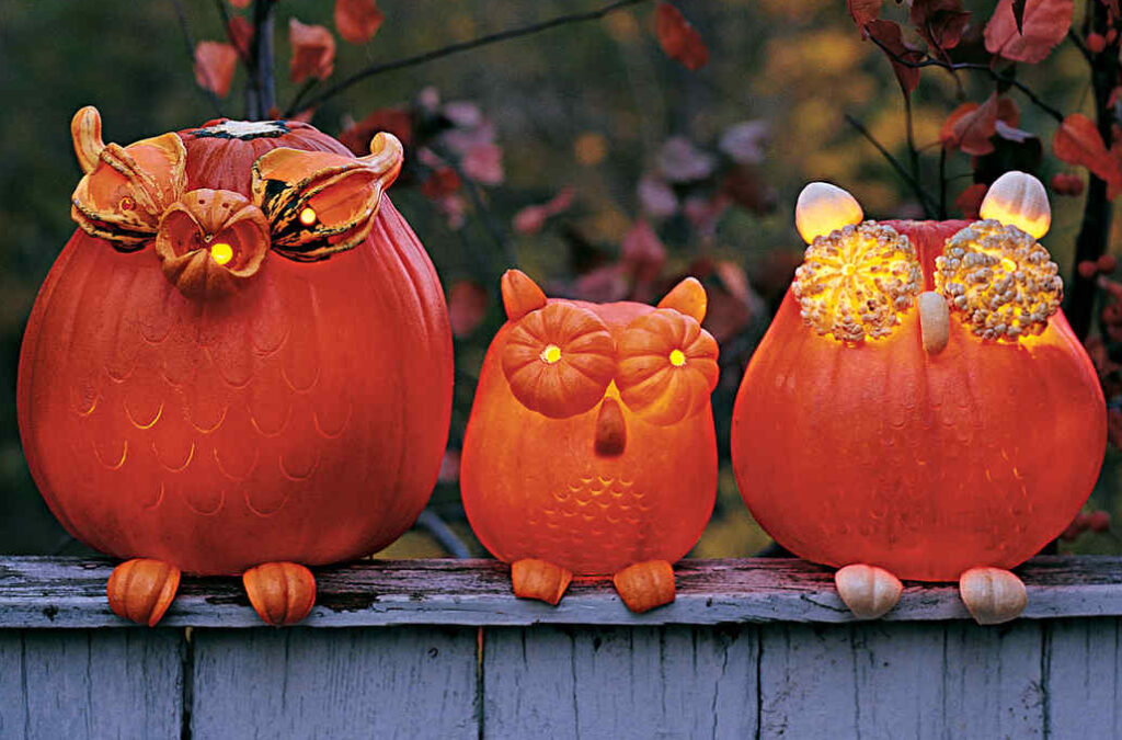 Owls made out of pumpkins. | The Dating Divas