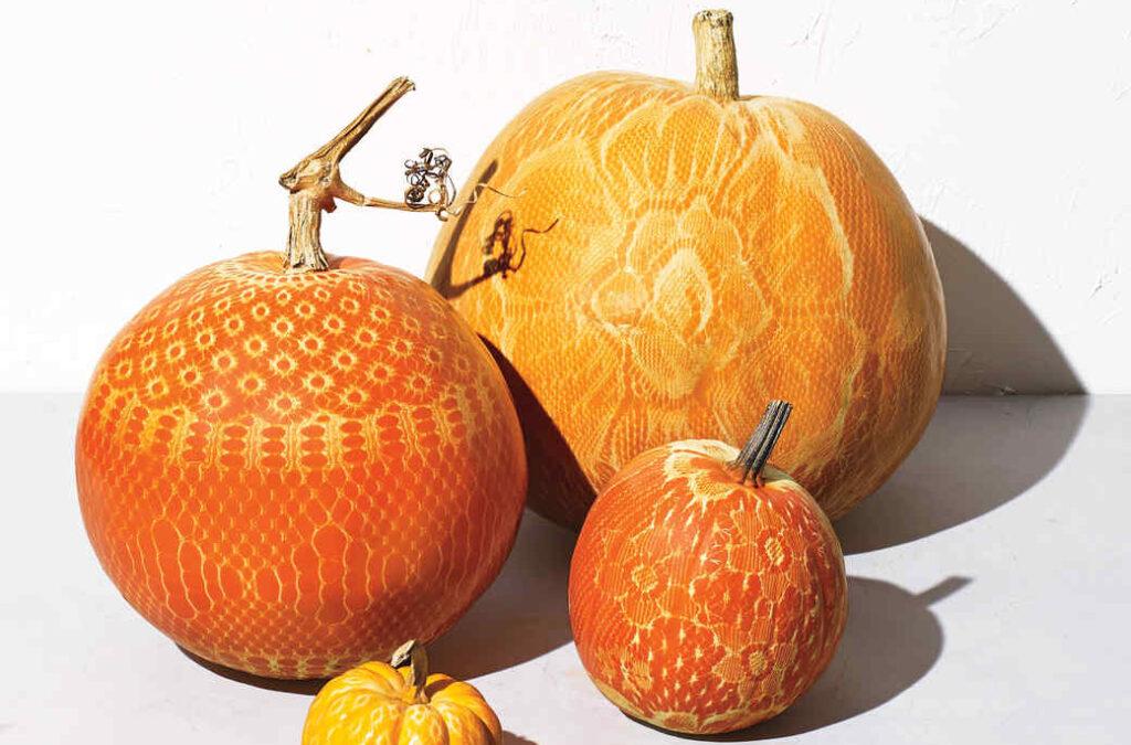 Lace pumpkin idea for a pumpkin carving party.| The Dating Divas