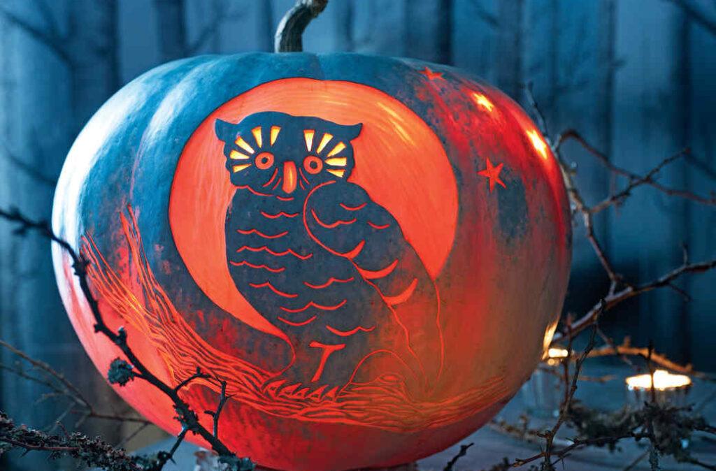Beautiful owl pumpkin carving patterns. | The Dating Divas