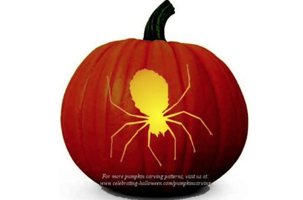 Spider pumpkin carving ideas. | The Dating Divas