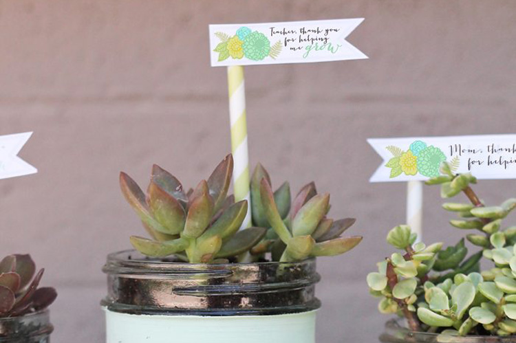 Teacher appreciation ideas for succulents and a free tag. | The Dating Divas