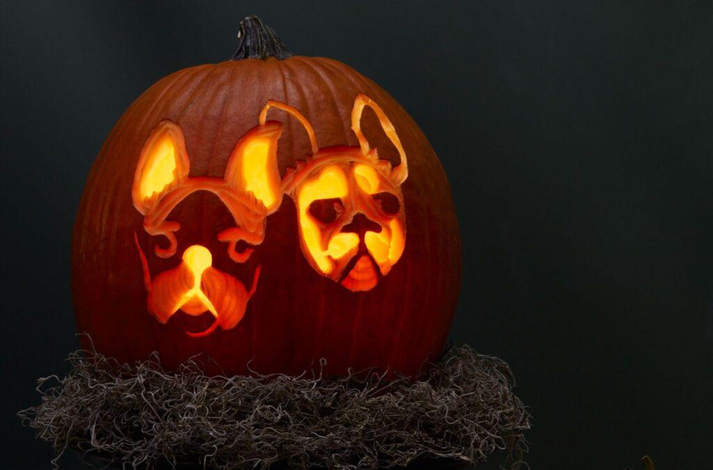 Pet dog pumpkin patterns and templates for pumpkin carving. | The Dating Divas