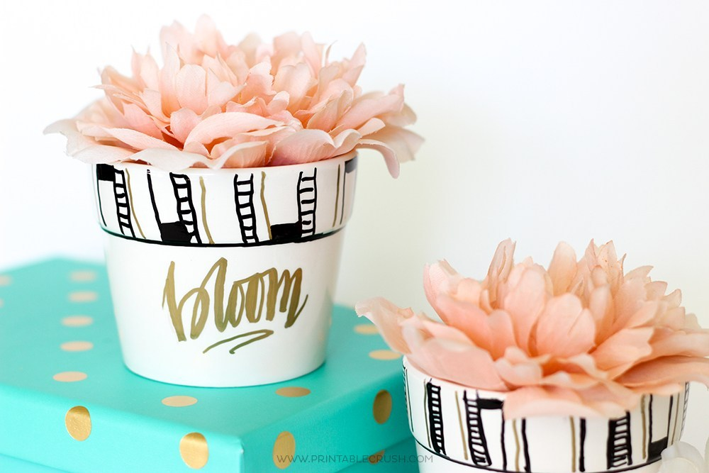 Adorable hand lettered pot that are perfect for everyone. | The Dating Divas