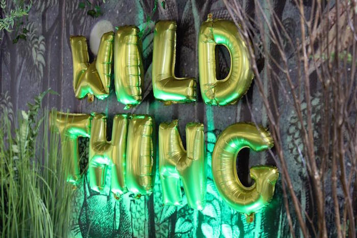 """""""Wild Thing"""" Baby Shower Theme 