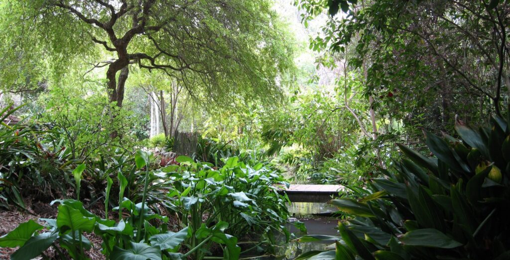Breathtaking views at Botanical Gardens in Los Angeles. | The Dating Diva