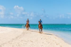 Horseback riding date idea that are perfect for adventurous couples.   The Dating Diva