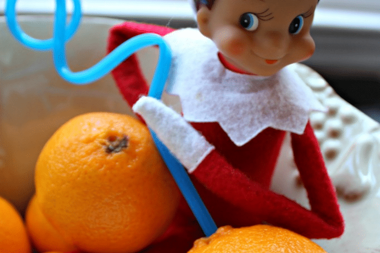 Elf on the pokes hole in orange with crazy straw to drink orange juice   The Dating Divas
