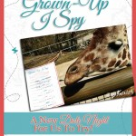 Amanda-GrownUpISpy-Pinterest