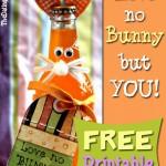 Love No Bunny