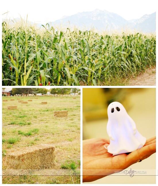Halloween Scavenger Hunt pic1 - Web Sized