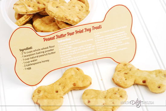 Hug Your Hound Dog Treat Recipe