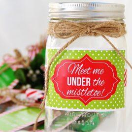 DIY Mistletoe Kit Christmas Gift