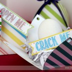 Julie-Crack-Me-Open-Pinterest-WebLogo