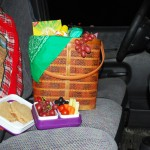 Winter Car Picnic