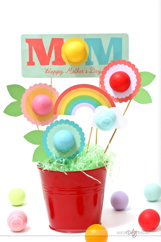 Mother's Day Gift Basket EOS Chapsticks
