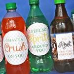 Soda Floats