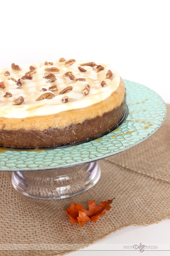 Pie Night Pumpkin Cheesecake
