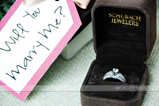 Sarina-say-yes-again-pinterest-&-photosliderlogo