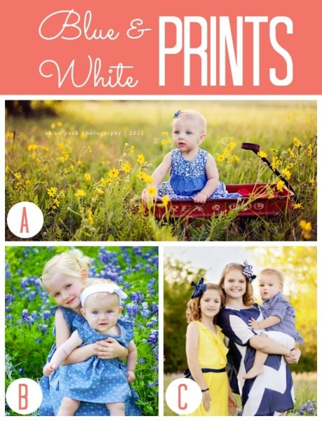 Spring Blue and White Tiny Prints