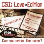 The CSI: